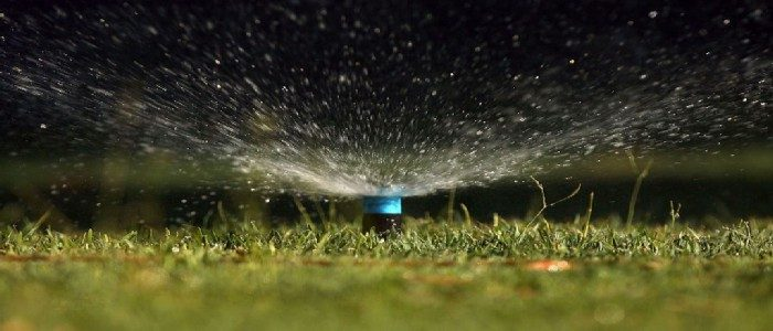 Can I Water My Lawn at Night