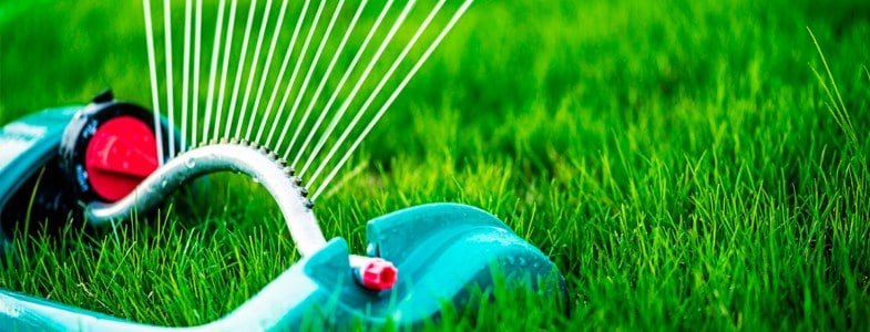 lawn care guides and tutorials