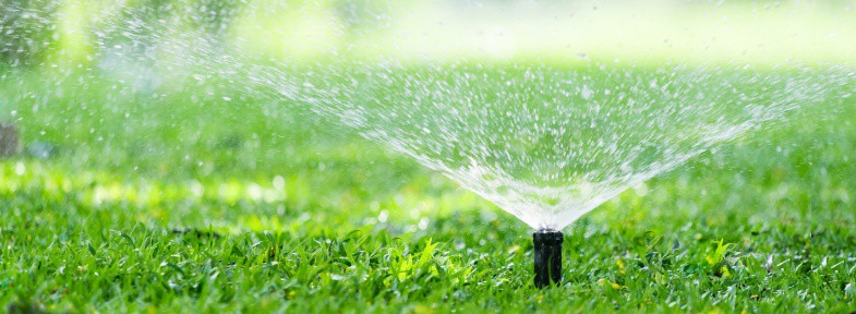 How Much Water Should An Irrigation System Use