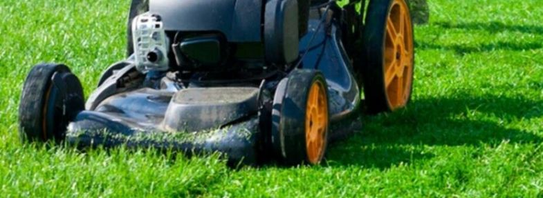 How to Buy a Lawn Mower You'll Love
