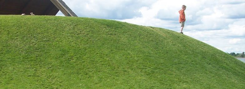 How to Grow Grass on a Steep Hill