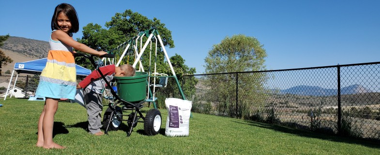 Lawn Box Commercial Spreader 3